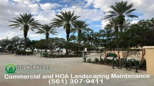 Broedell Landscaping Commercial and HOA Services