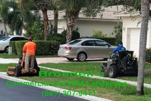 Commercial and HOA Lawn Maintenance