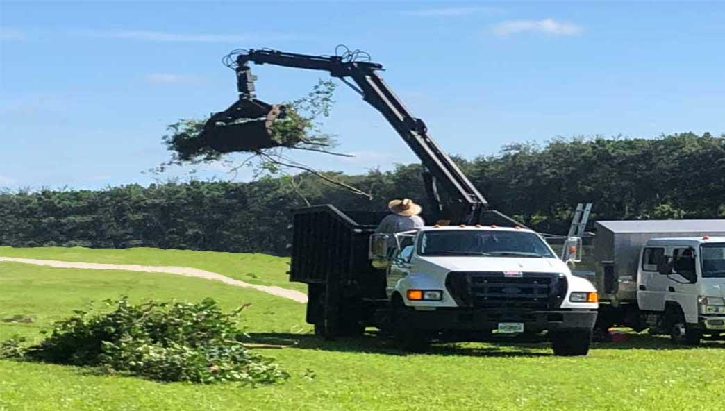 Commercial Debris Removal golf debris removal truck.