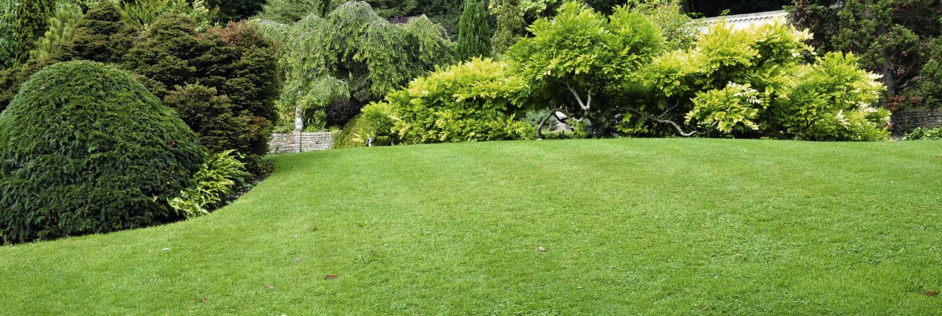 HOA Landscaping Services by Broedell Landscaping company